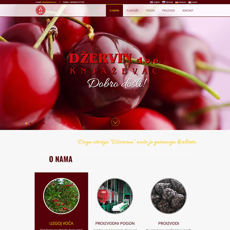 Web dizajn - Dzervin